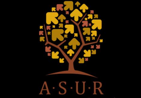 Centru de cursuri pentru parinti / parenting: Asur
